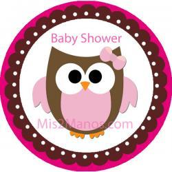 Baby Owl Baby Shower Sticker Labels 2 inch Round Party Favor Stickers Set of 20